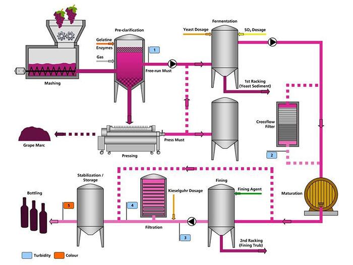 quy trình sản xuất rượu vang Chile