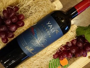 Rượu vang Chile - Yali Reserva Cabernet Sauvignon 1
