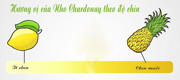 hương vị nho Chardonay