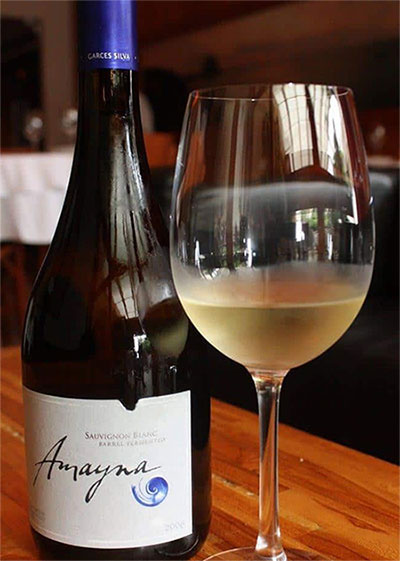 Rượu vang Garces Silva