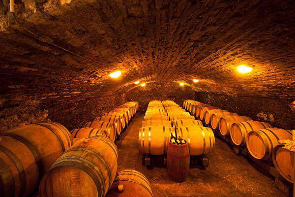 hầm rượu vang Chile