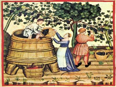 lịch sử hình thành rượu vang Chile