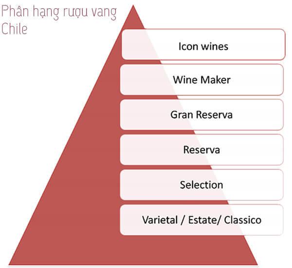 phân loại rượu vang Chile