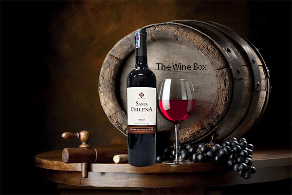 rượu vang Santa Chilena