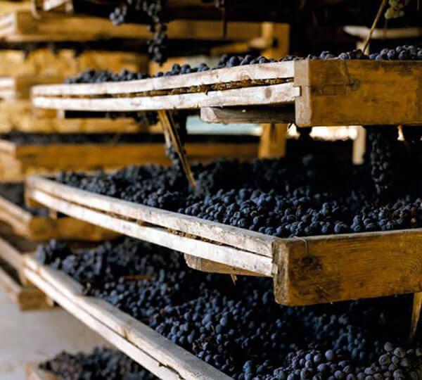 rượu vang Chile ổn định về chất lượng
