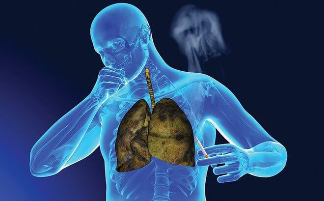 rượu vang có tác dụng ngăn ngừa và bảo vệ phổi