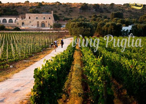 vùng Puglia
