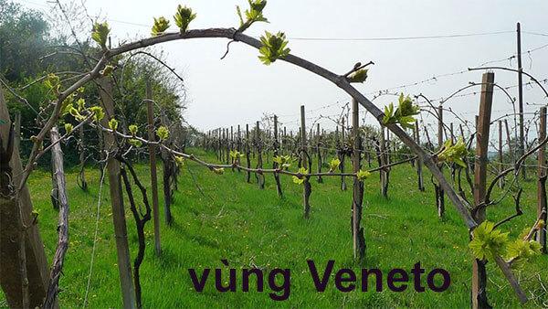 vùng Veneto