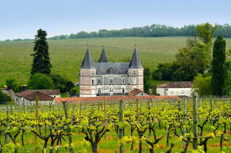 vùng trồng nho Cognac
