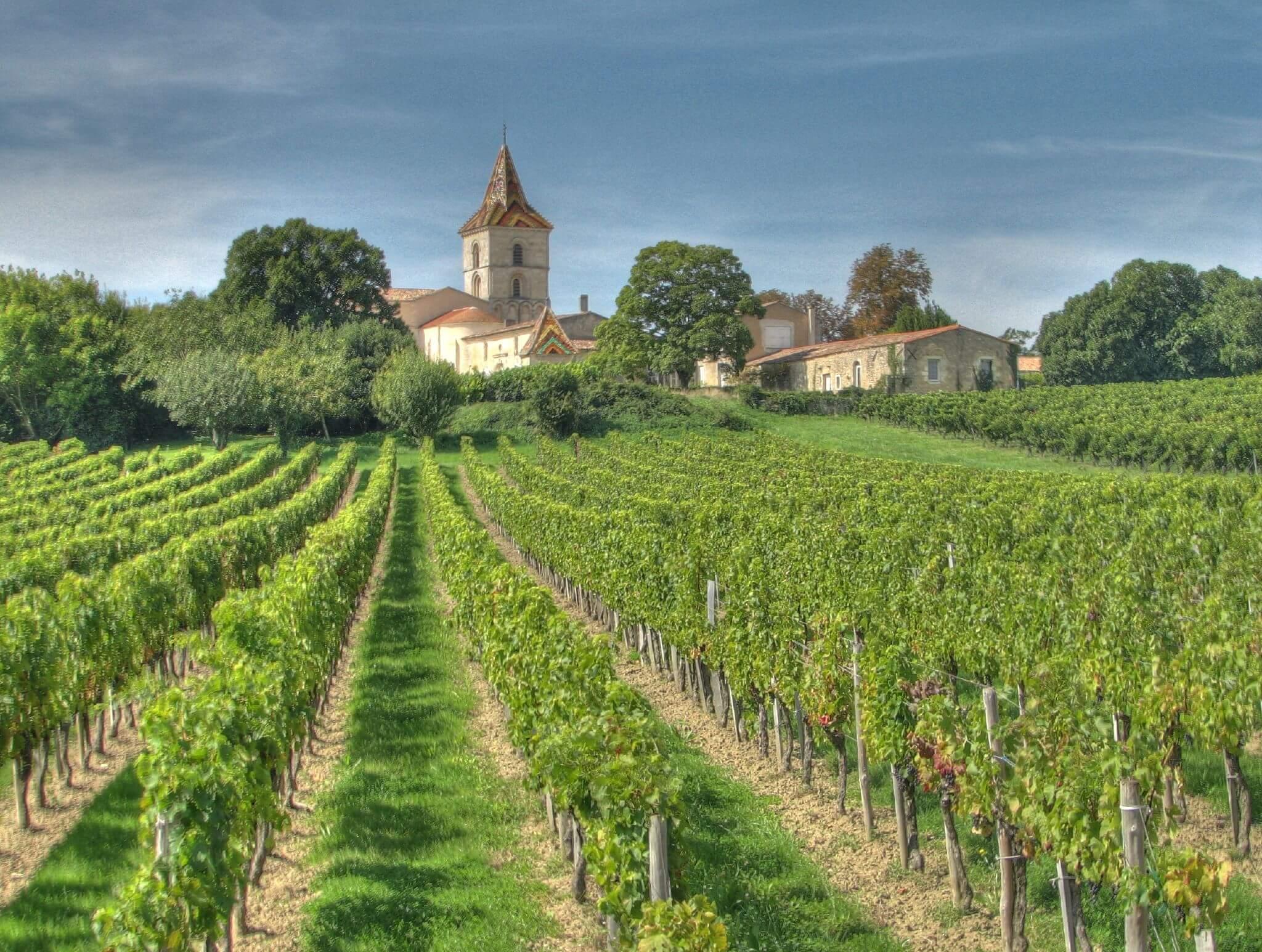 vùng trồng nho Languedoc-Roussillon