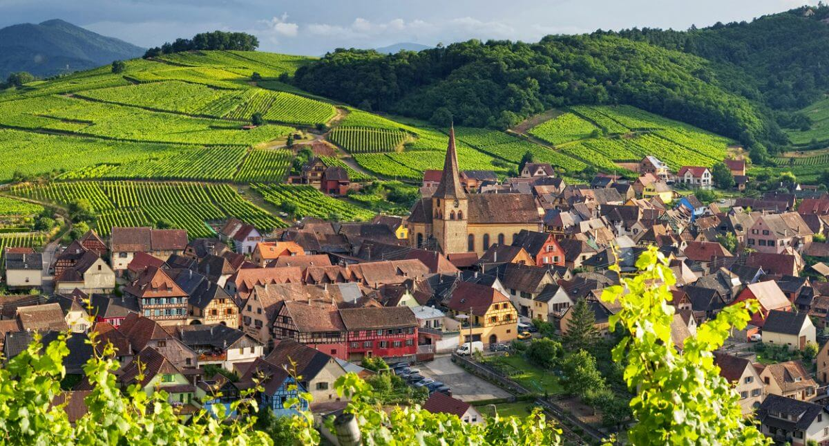 vùng trồng nho Alsace