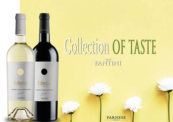 rượu vang Collection