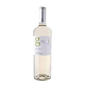 Top 12 chai rượu vang Chile ngon được ưa chuộng nhất 6