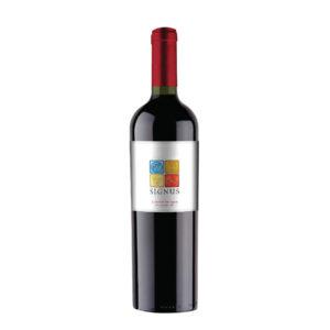 Top 12 chai rượu vang Chile ngon được ưa chuộng nhất 5
