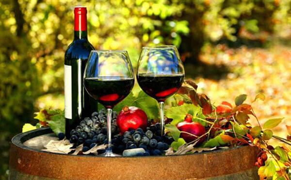 Top 7 chai rượu vang đỏ Pháp lý tưởng cho mọi buổi tiệc 4