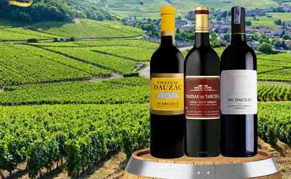 7 chai rượu vang đỏ Bordeaux Chateau ngon, giá hợp lý 1