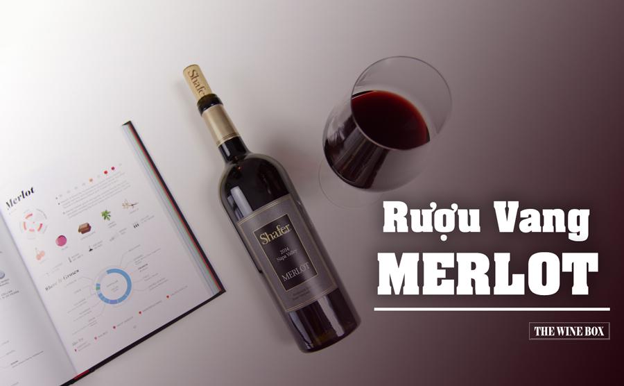 Rượu vang Merlot - Hương vị vang thanh lịch, sang trọng và hấp dẫn 1