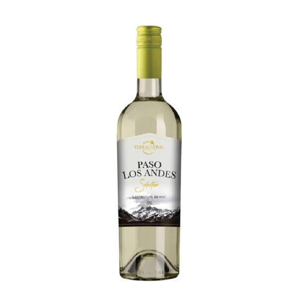 PASO LOS ANDES SAUVIGNON BLANC - WHITE 1